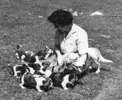 Marian Tait with our first litter in 1960
