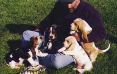 John Tait with a litter of Basset puppies